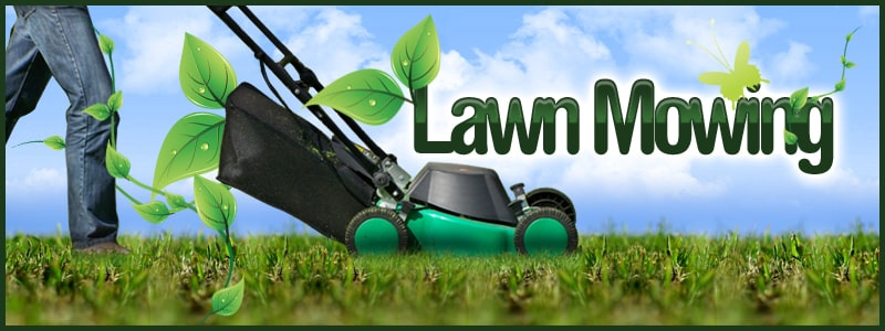 ecoScapes Lawn Care | (402) 671-0453 | Lawn Mowing Service in Omaha