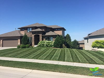 Lawn care provided by Omaha lawn care service - EcoScapes